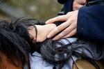 Prises en charge thérapeutiques et psycho éducatives avec le cheval pour personnes en difficultés et/ou porteuses de handicap